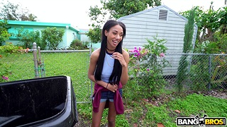 Fucking in the nearly of the van with sexy ebony Alexis Avery